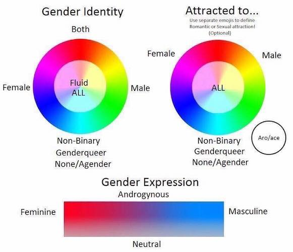 Gender_sexuality